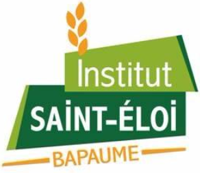 logo de Institut Saint-Eloi