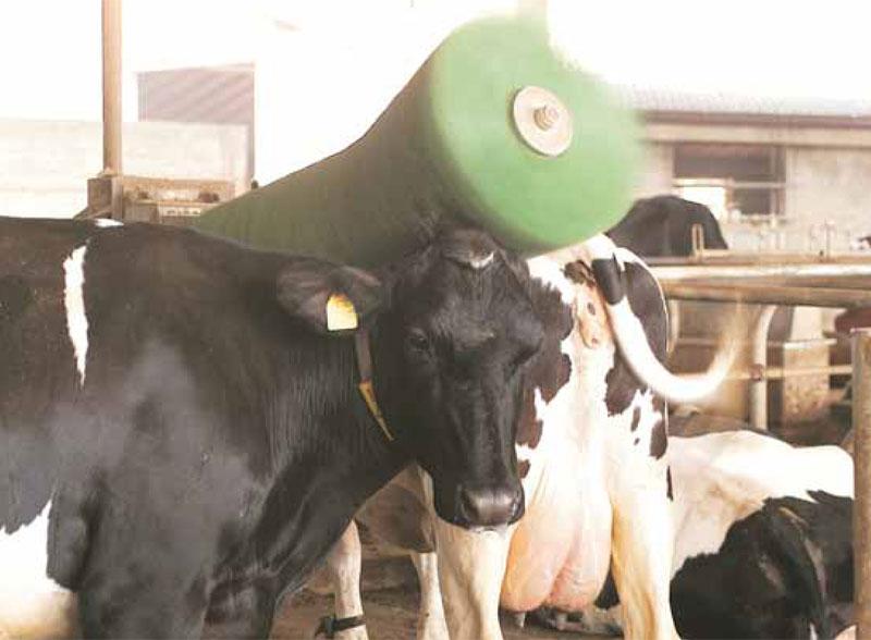 Photo du Brosses à vaches Brosse à vaches rotative