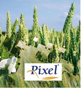 Photo du Fongicides céréales Pixel