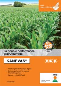 Photo du Variétés de maïs mixte Kanevas