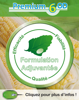 Photo du Herbicides maïs Pampa Premium 6OD
