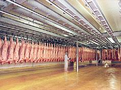 Photo du Abattoirs Abattage et découpe de porcs