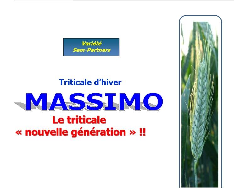 Photo du variétés de triticale Massimo