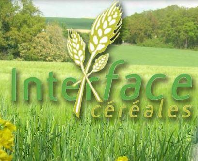 Photo du Coopératives de commercialisation des céréales Coopérative agricole implantée sur l'Eure-et-Loir et l'Eure