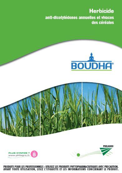 Photo du Herbicides céréales Boudha