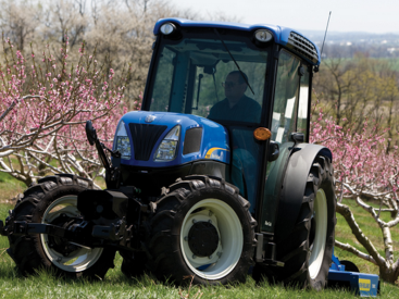 Photo du Tracteurs fruitiers T4060F