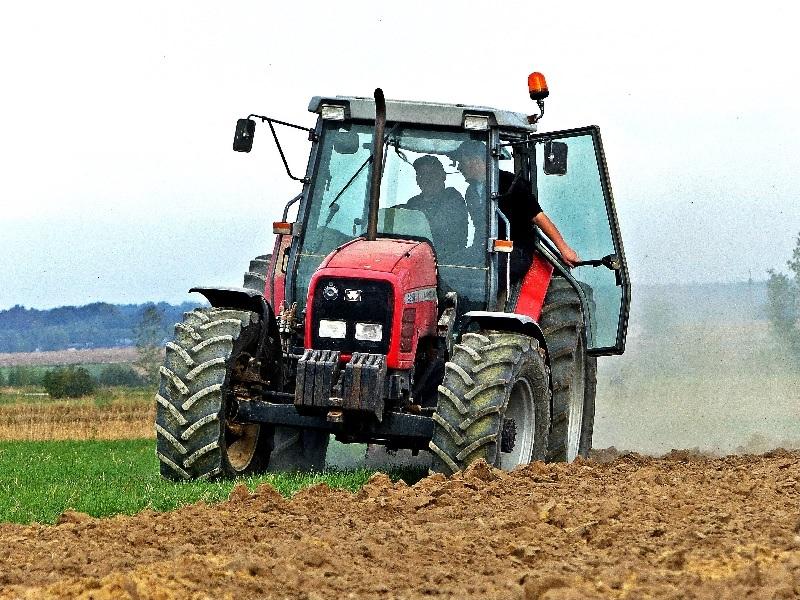 Photo du Tracteurs agricoles MF 4260 Luxe