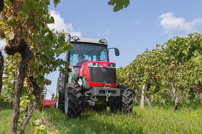 Photo du Tracteurs agricoles MF 3630 V