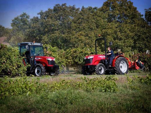 Photo du Tracteurs agricoles MF 3635 V