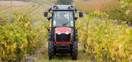 Photo du Tracteurs agricoles MF 3635 V | S | F