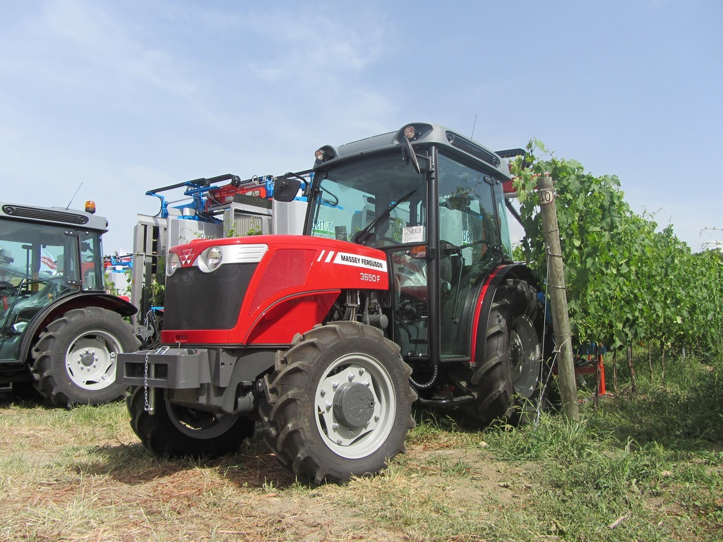 Photo du Tracteurs fruitiers MF 3650 F