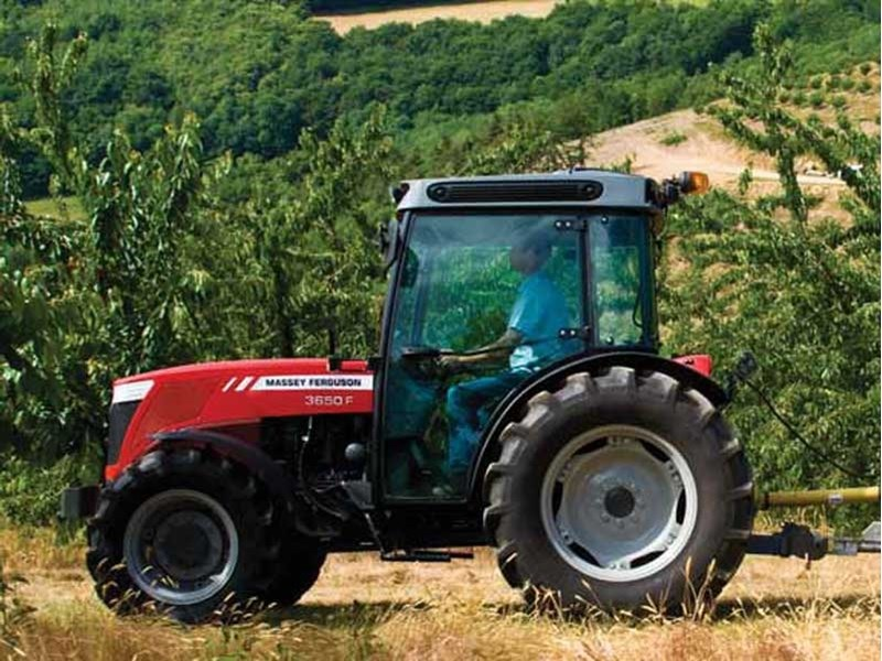 Photo du Tracteurs fruitiers MF 3650 F XTra