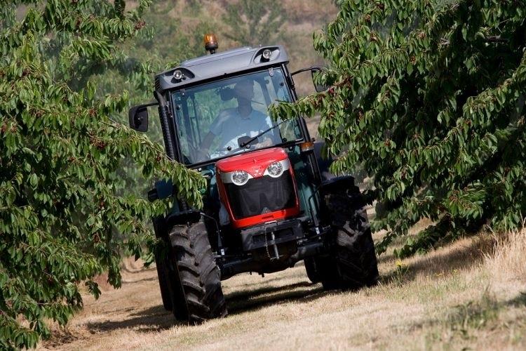 Photo du Tracteurs fruitiers MF 3650 GE XTra