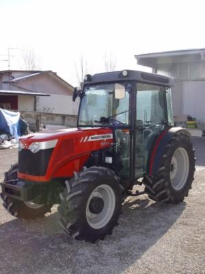 Photo du Tracteurs fruitiers MF 3655 F & S