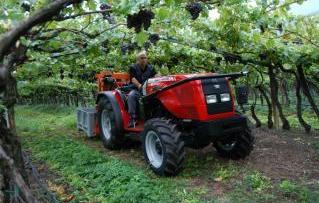 Photo du Tracteurs fruitiers 3350 F Arceau Rabattable