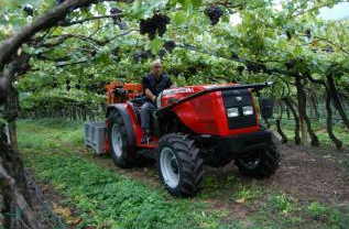 Photo du Tracteurs fruitiers MF 3445 F
