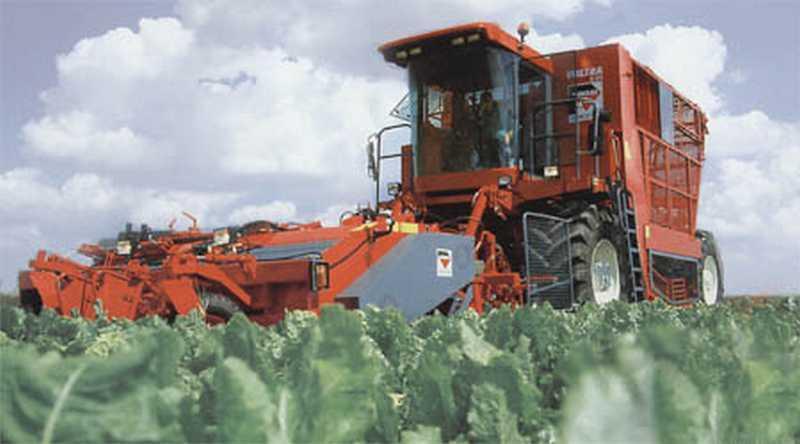 Photo du Récolte des betteraves Voltra 6.24