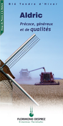 Photo du variétés blé d'hiver Euclide