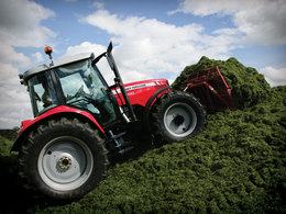 Photo du Tracteurs agricoles MF 5435