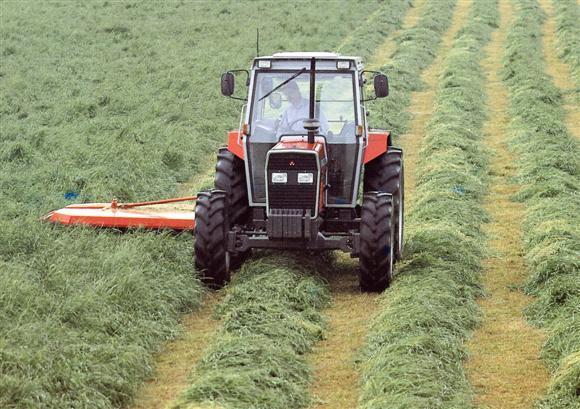 Photo du Tracteurs agricoles MF 352