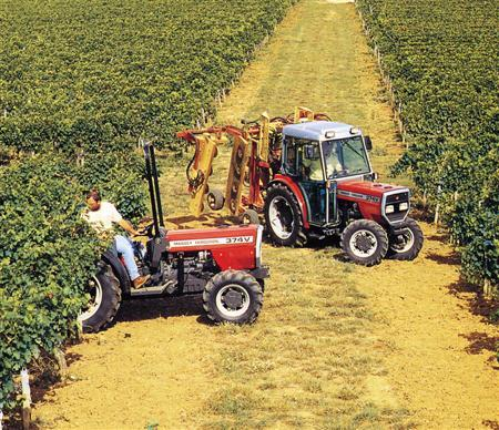 Photo du Tracteurs agricoles MF 374 V