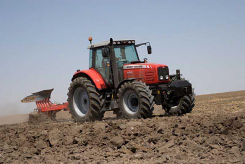 Photo du Tracteurs agricoles MF 6495