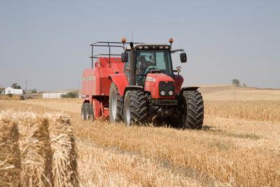 Photo du Tracteurs agricoles MF 7465