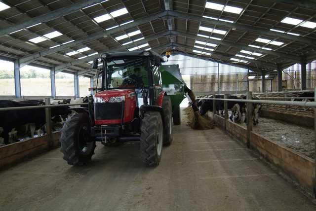 Photo du Tracteurs agricoles MF 3625