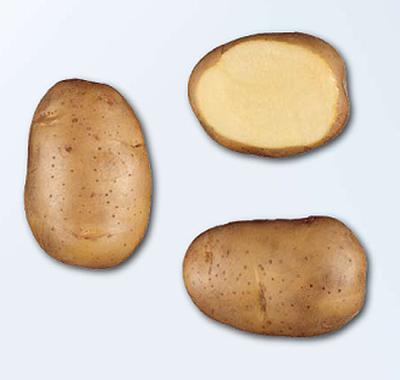 Photo du Pommes de terre de consommation Lady Claire