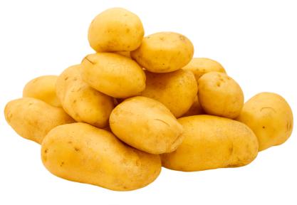 Photo du Commercialisation des pommes de terre Commercialisation de toutes variétés de pommes de terre