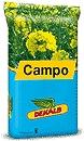Photo du variétés de colza d'hiver Campo