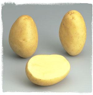 Photo du Pommes de terre de consommation Monalisa