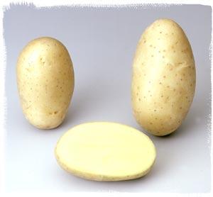 Photo du Pommes de terre de consommation Dali