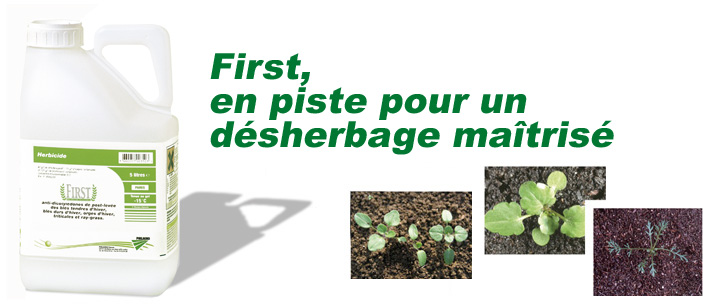 Photo du Herbicides céréales First