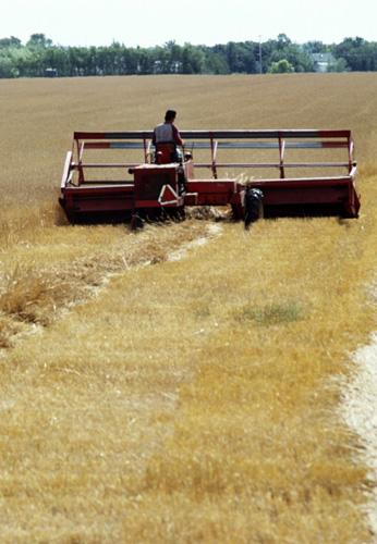Photo du Basé en Midi Pyrénées Travaux agricoles, Travaux publics