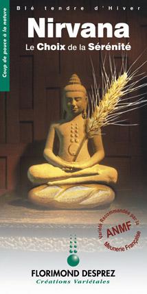 Photo du variétés blé d'hiver Nirvana
