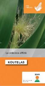 Photo du Variétés de maïs mixte Koutelas
