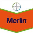 Photo du Herbicides maïs Merlin