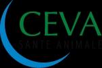 Photo du Traitement des maladies respiratoires des bovins Cevaxel