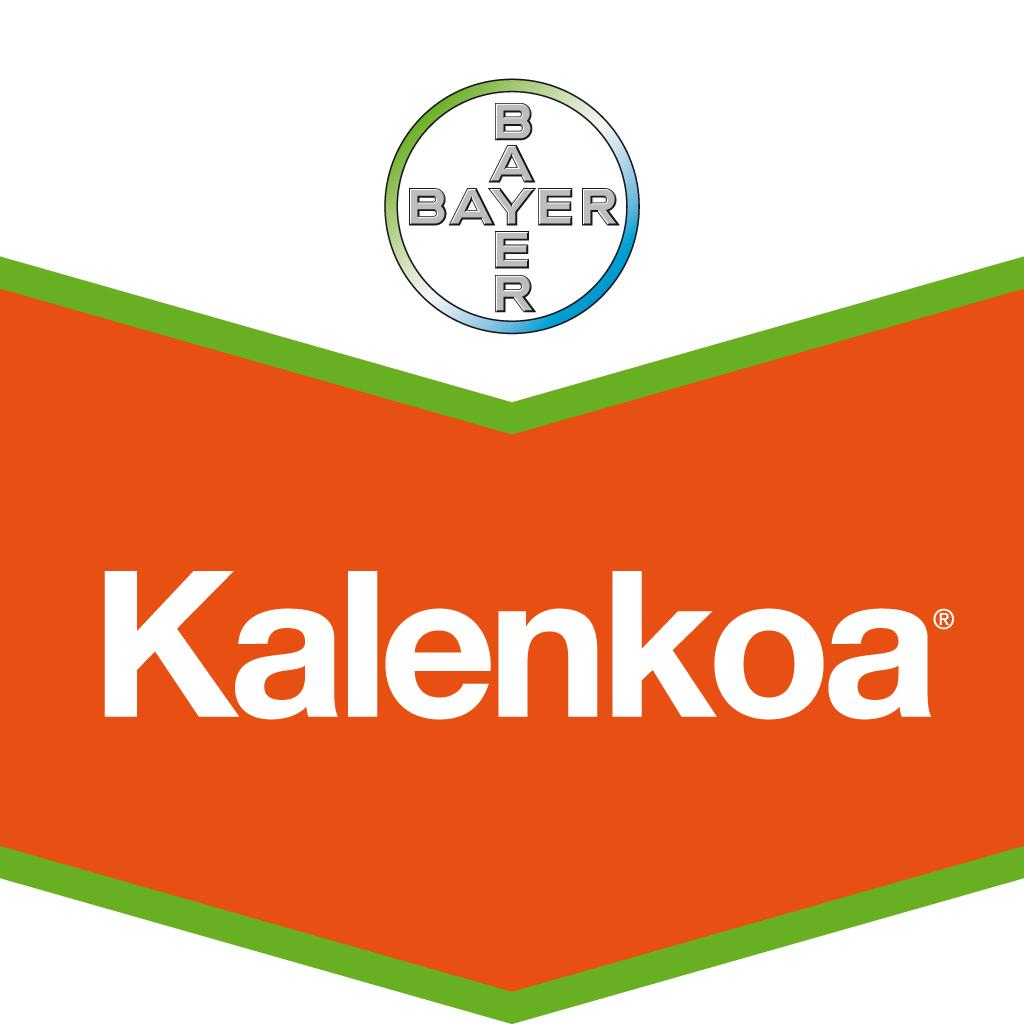 Photo du Herbicides céréales Kalenkoa