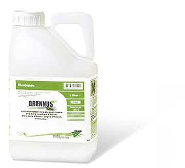 Photo du Herbicides céréales Brennus Plus