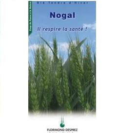 Photo du variétés blé d'hiver Nogal