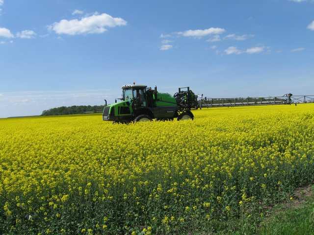 Photo du Herbicides Oléagineux Liberty