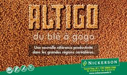 Photo du variétés blé d'hiver Altigo