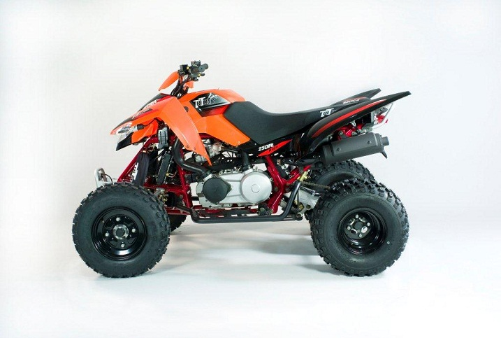 Photo du Quads Baja 250 R