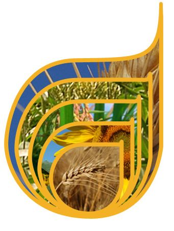 Photo du Coopératives de commercialisation des céréales Groupe Sud Céréales