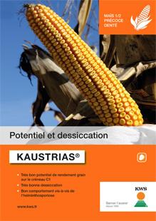 Photo du Variétés de maïs grain Kaustrias