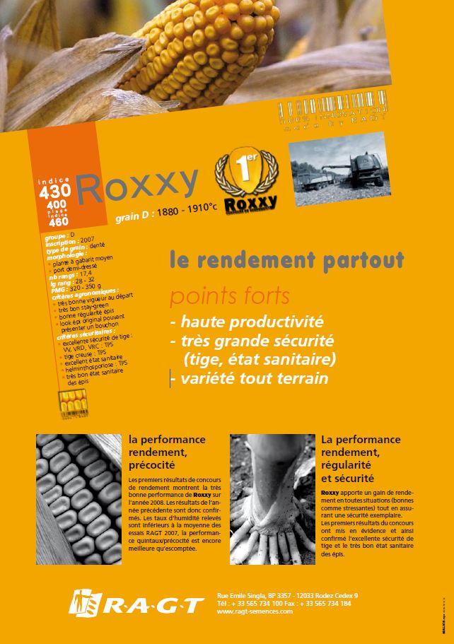 Photo du Variétés de maïs grain Roxxy