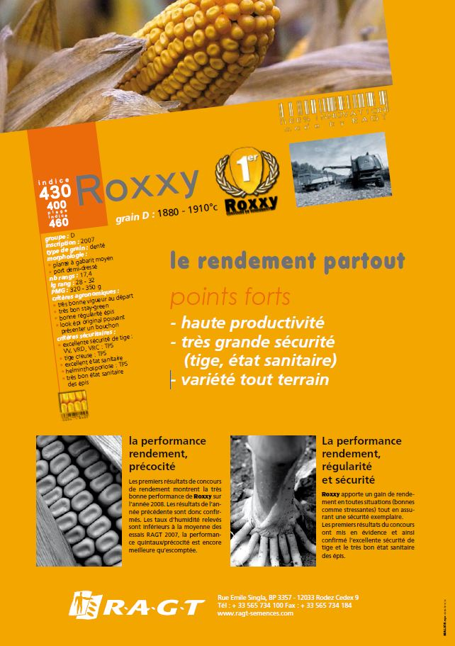 Photo du Variétés de maïs grain Roxxy