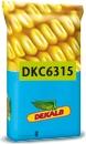 Photo du Variétés de maïs grain DKC6315